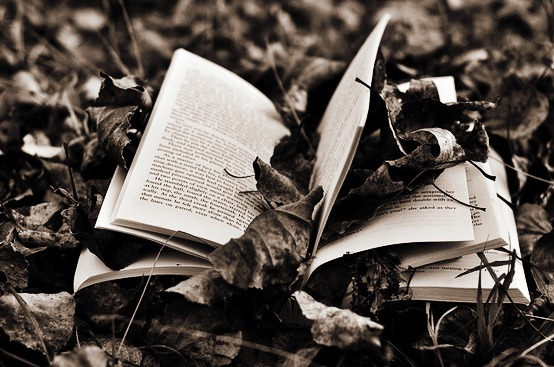 book in leaves black and white dawnjpg